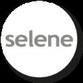 Trabalho Selene - Agência de Modelos Max Fama
